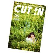 cut_in_6